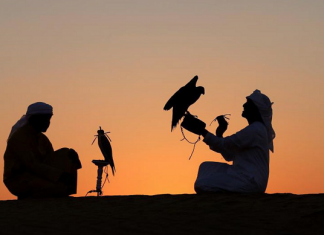 Şahinler Ünlü Gösteri İçin Katar'dan Geliyor